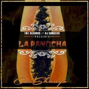 "Cover tema ""La Panocha"""