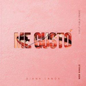 "Cover tema ""Me Gustó"""