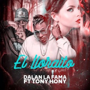 "Cover tema ""El Lloraito"""