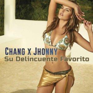 """Cover tema """"Su Delincuente Favorito"""""""