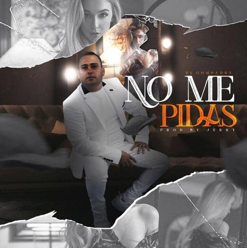 """Cover tema """"No me Pidas"""""""