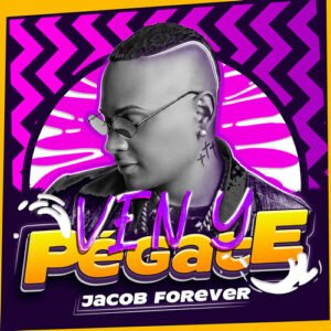 "Cover tema ""Ven y Pégate"""