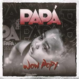 "Cover tema ""Papa"""