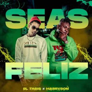 "Cover tema ""Seas Feliz"""