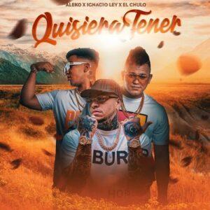 """Cover tema """"Quisiera Tener"""""""